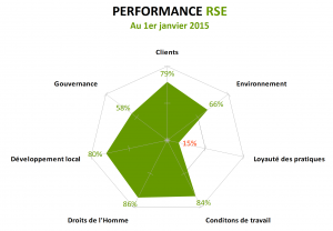 Performance RSE 2015