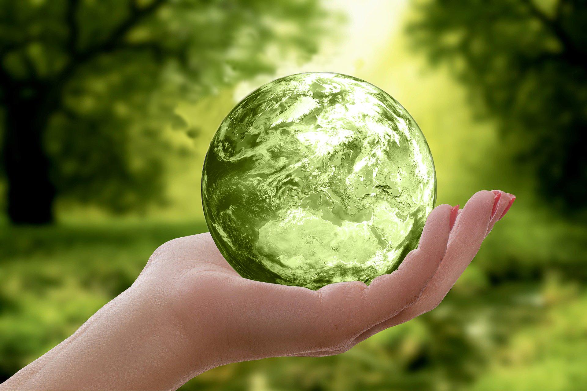 Préserver la planète en recyclant au bureau