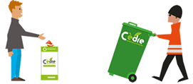 Recyclage avec Cèdre